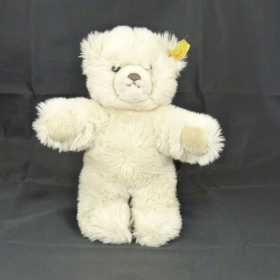 Molly Teddy 01.2020